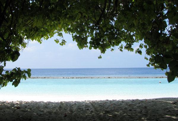 Пляж на Мальдивах. Фото