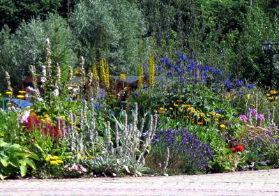 Какие цветы цветут в июне и июле, фото