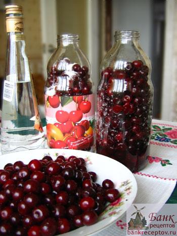 настойки вишни Рецепт наливки из