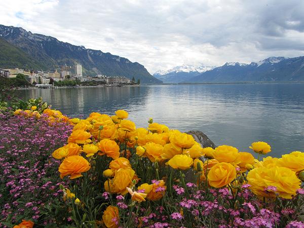 Монтрё. Женевское озеро. Альпы, фото