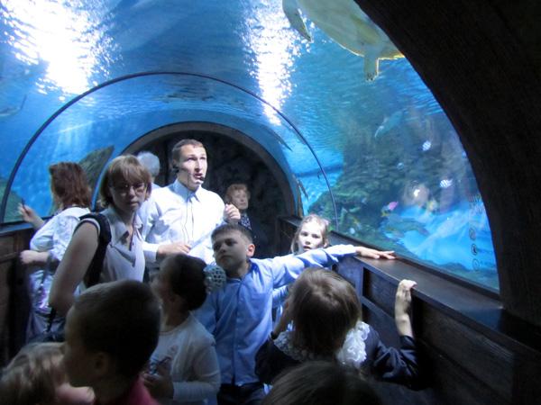Московский Океанариум. Фото